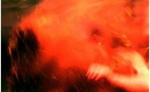 repertorio loris petrillo